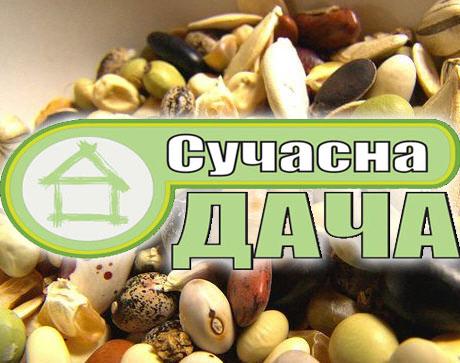 Создание интернет-каталога семян «Сучасна Дача», оптимизация и продвижение