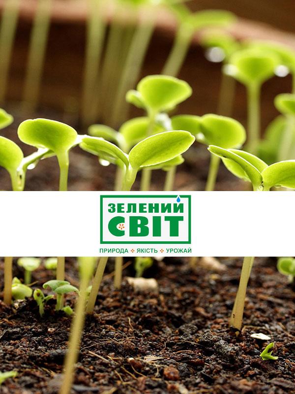 Создание интернет-магазина семян и огородных принадлежностей «Зелений Світ»