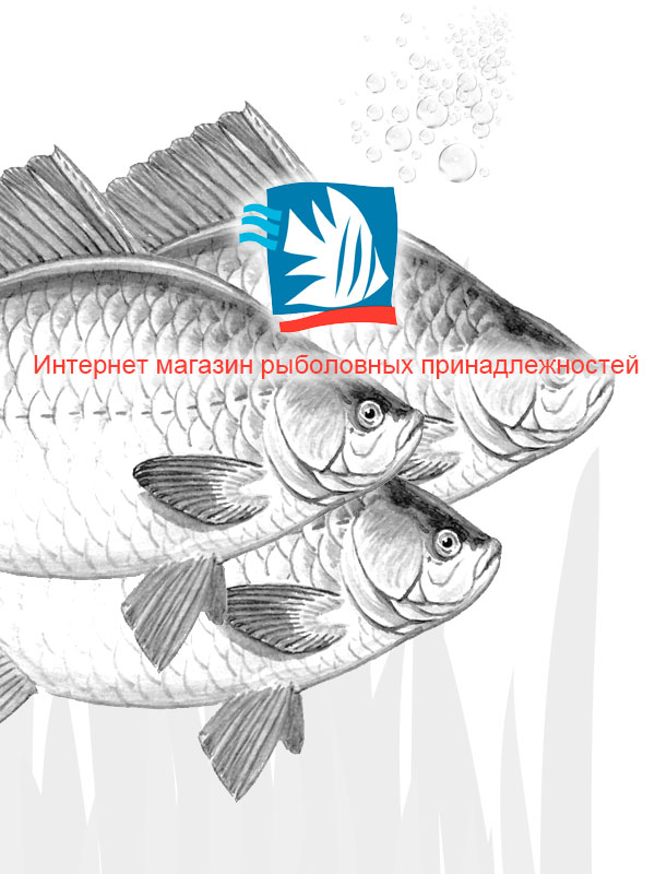 Создание интернет магазина рыболовецких снастей «Fish-Mag»